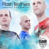 FLASH BROTHERS IN THE STREAM VOL. 1 (Clubstream)